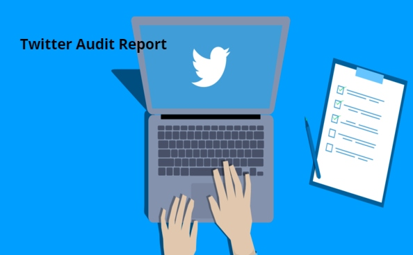 5 Minute Guide For Conducting Twitter Audit Report